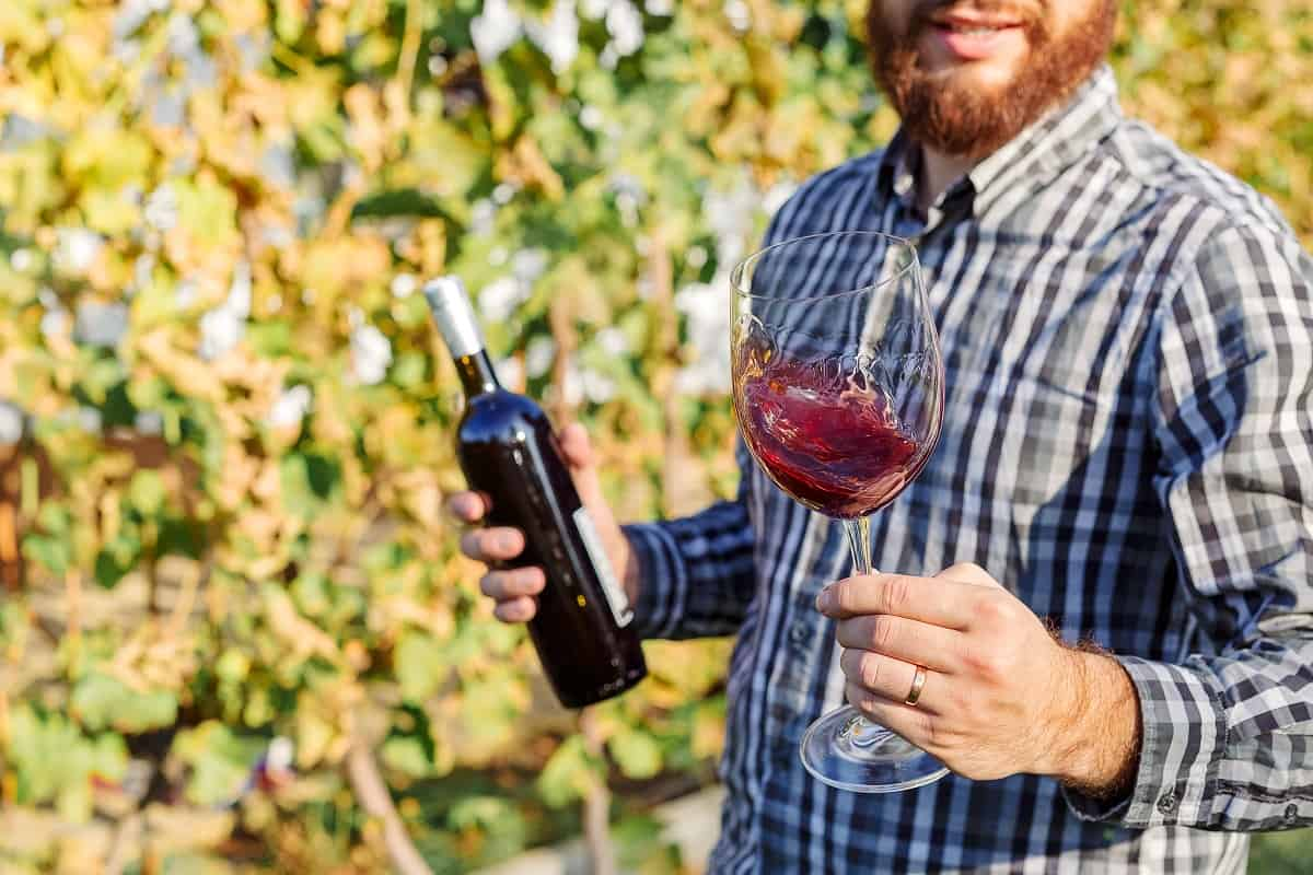 vino-irpinia